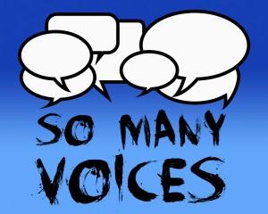 SO MANY VOICES 1