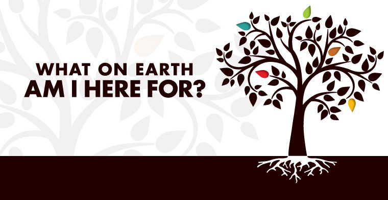 What On Earth Am I Here For: The Primary Purpose | St. Luke United ...
